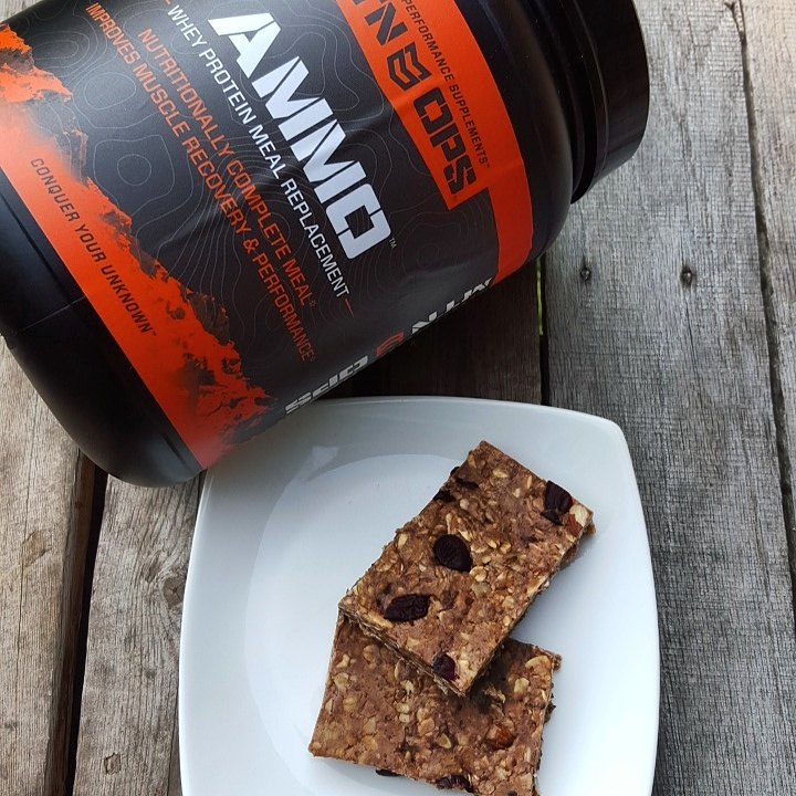 Mtn Ops Protein granola bars